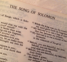 3 Reasons You Should Preach through The Song of Solomon : 9Marks
